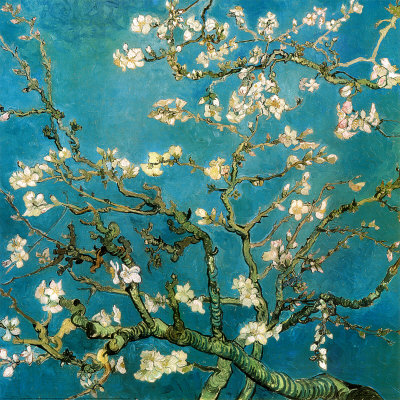 Almond Branches in Bloom,van Gogh